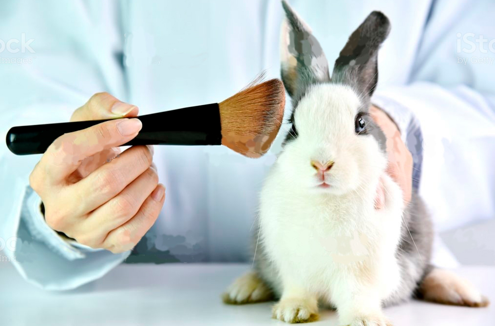 conejo-Naturalmente aromas